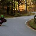 Rohholz Skateboards & Longboards