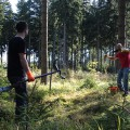 ROHHOLZ Plant Trees