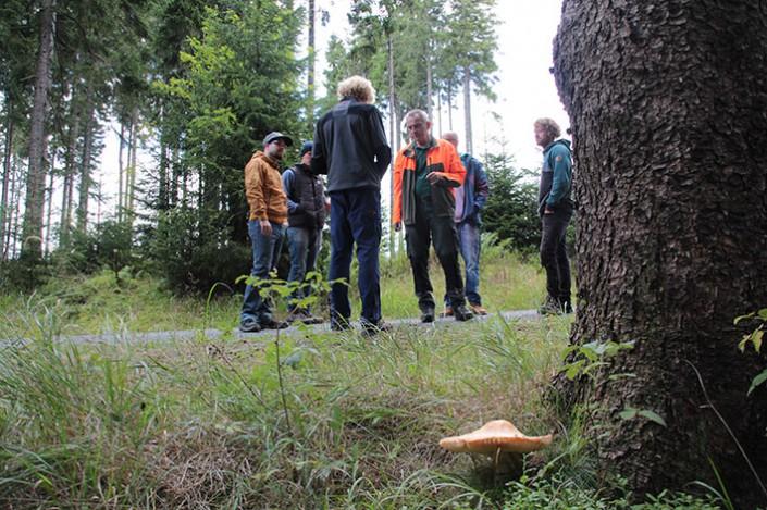 Forstfachliche Führung mit Micha - ROHHOLZ Plant Trees
