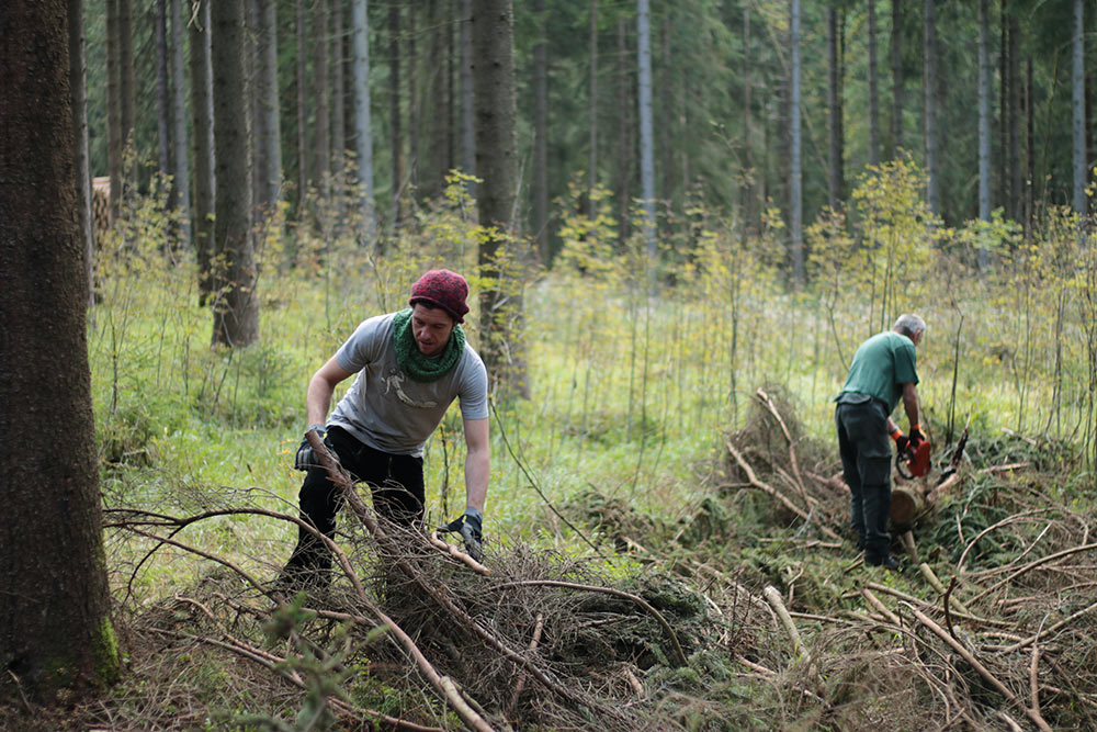 Reißig räumen im Forst - Plant Trees 2016 - Rohholz Baumpflanzaktion