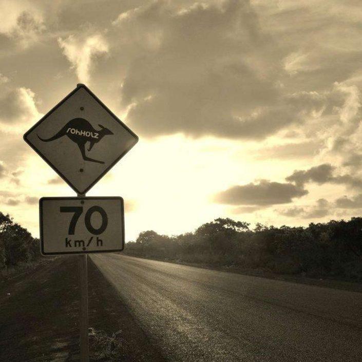 kangaroo sticker - Rohholz surf & travel