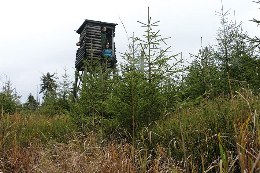 Hochsitz - Rohholz Baumpflanzprojekt