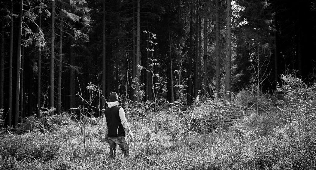 Ein Mono im Wald - Rohholz Plant Trees 2018