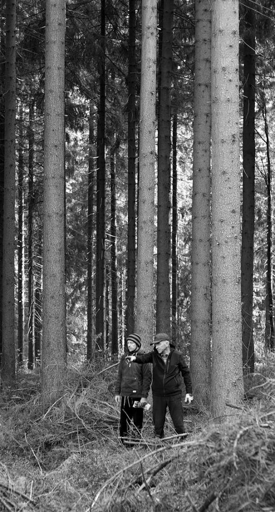 the way we go - Rohholz Plant Trees 2018