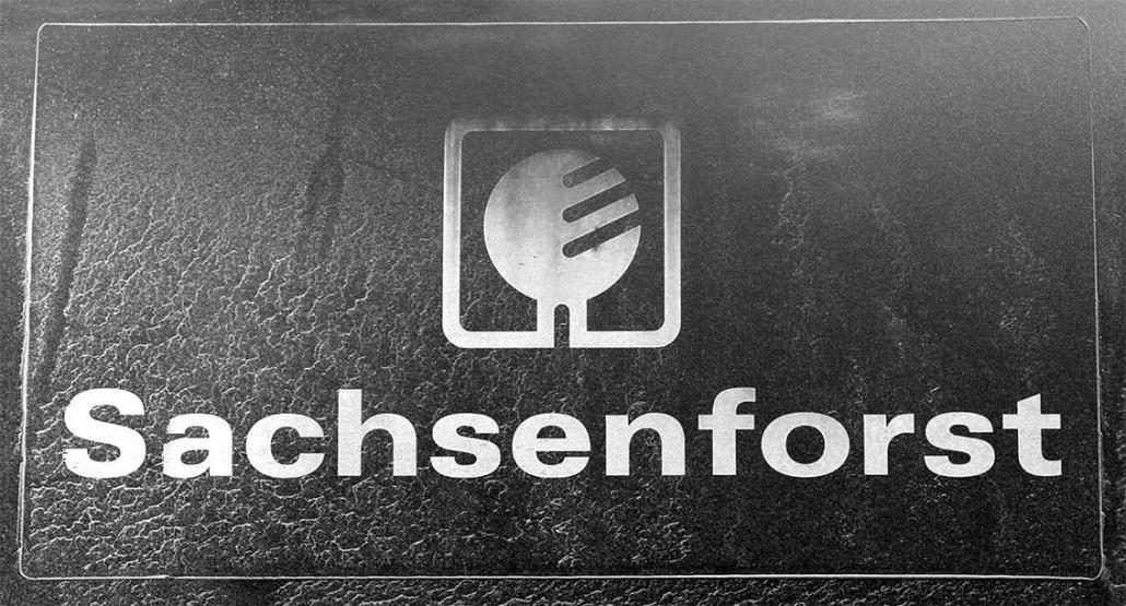 Sachsenforst - Rohholz Plant Trees 2018