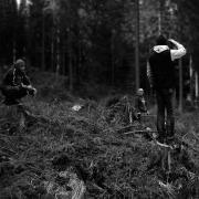 Rohholz - Plant Trees 2018